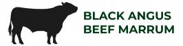Logo BABM
